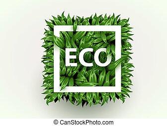 frame., square., eco, concept., réaliste, formulaire, frais, herbe