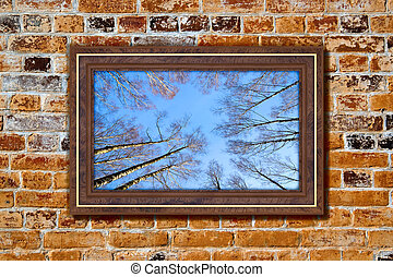 Frame to the nature