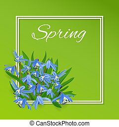 frame with blue spring flowers Squill (scylla)