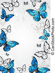 Frame with butterflies morpho
