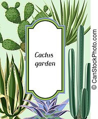 Frame with cactuses and succulents set. Plants of desert