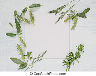 Frame with different herbs