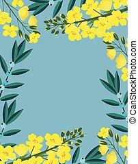 frame with flowers of canola - canola flowers background ...
