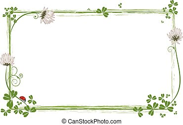 frame with flowers of clover and ladybird