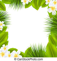 Frame With Frangipani And Leaf With Gradient Mesh, Vector...