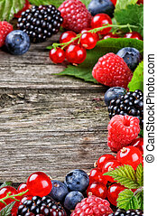 Frame with fresh summer berries
