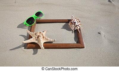 Frame with shell starfish sunglass