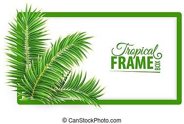 frame., zielony, leaves., layout., tropikalny, projektować, vector., dłoń, chorągiew