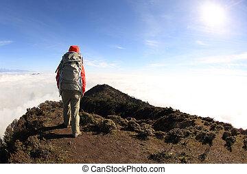 framgångsrik, kvinna, vandrare, tycka om, den, synhåll, bergstopp
