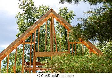 Framing New House