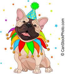 francês, bulldog%u2019s, aniversário