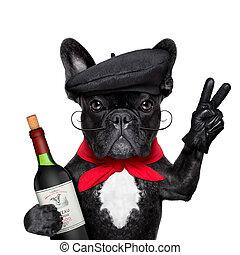 francês, cão