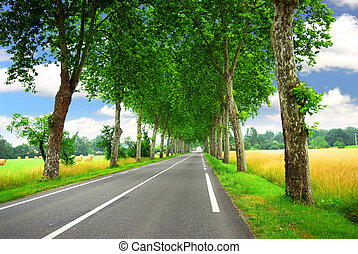 francês, estrada rural