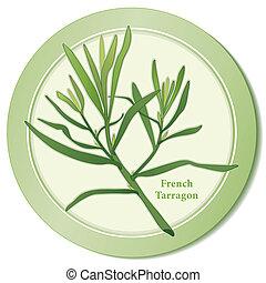 francês, estragão, erva, ícone