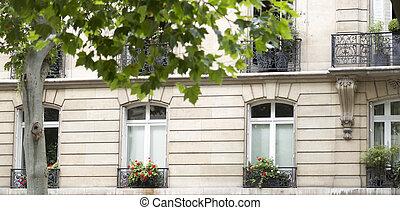 francês, sacadas, com, flores, em, paris