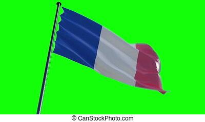 France Flag, greenscreen and alpha