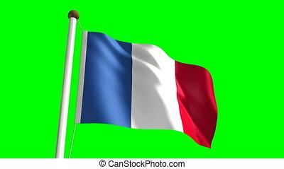 France flag (Loop & green screen)