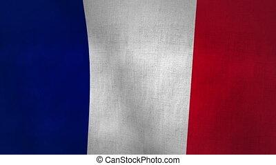 France Flag Textured (Loop-able)