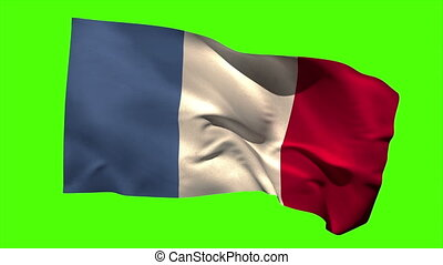 France national flag blowing in the wind