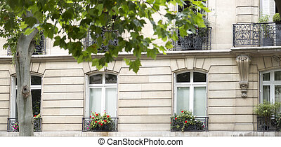 francese, balconi, con, fiori, in, parigi