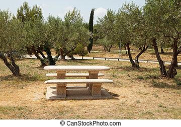 francese, tavola picnic