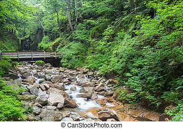 Beautiful cascading water over rocks at scenic Franconia Notch in New Hampshire