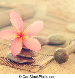 frangipani, スタイル, 花, レトロ