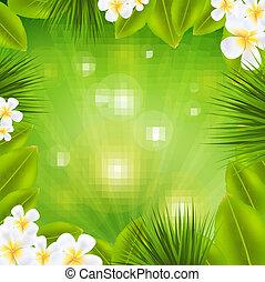 frangipani, フレーム, sunburst