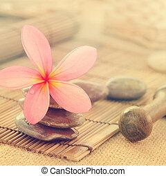 frangipani, 花, 中に, retro 様式