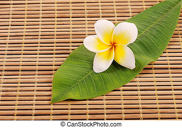 Frangipani and polished stone on bamboo mat