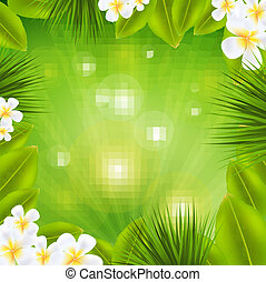 frangipani, cornice, sunburst