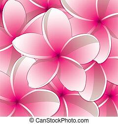 Frangipani! - All occasion frangipani card in vector format.