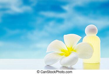 frangipani, fiore, plumeria, terme