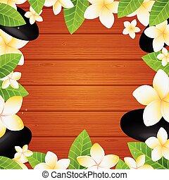 frangipani, fiori bianchi