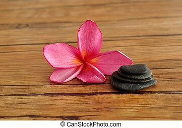 Frangipani flower and pebbles