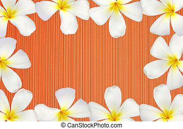 Frangipani flower frame on red wood texture, seamless repeat