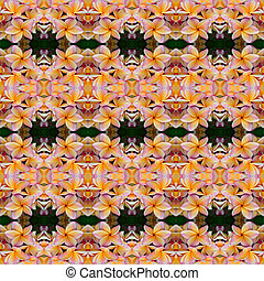 Frangipani flower seamless pattern background