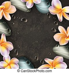 Frangipani flowers and zen stones