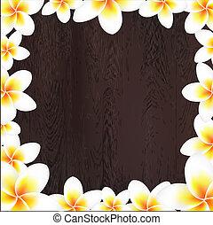 frangipani, marco, madera, fondo blanco
