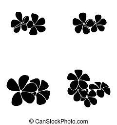 frangipani silhouette