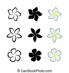 Fleurs Blanches Noir Plumeria Stylisé Fleurs Blanches
