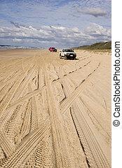 Fraser Beach Highway - Four wheel drive tracks on Fraser...