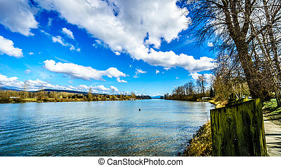 Fraser River at Fort Langley - Fraser River as it Flows past...