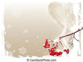 frassino, inverno, fondo, ramo