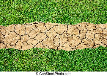 fraturas, grass., verde, fissures, seca, chão