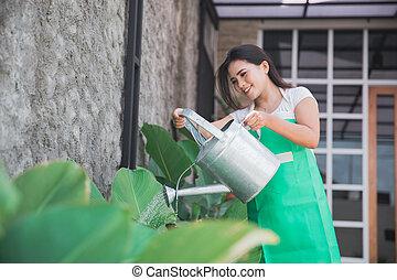 frau, bewässerung, kleingarten, sie