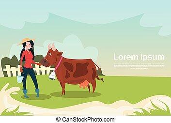frau, kuh, eco, landwirt, zucht, landwirtschaft