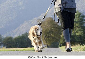 frau laufen, mit, sie, hund