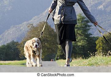 frau laufen, mit, sie, hunden