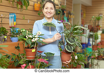 frau, mit, calathea, pflanze, in, blume- speicher